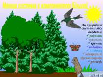 До природної системи лісу входять: рослини тварини ґрунти водойми повітря мін...