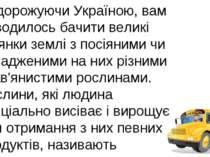 Подорожуючи Україною, вам доводилось бачити великі ділянки землі з посіяними ...