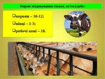 корови – 10-12; корови – 10-12; вівці – 1-3; робочі коні – 10.