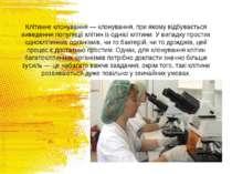 Клітинне клонування — клонування, при якому відбувається виведення популяції ...