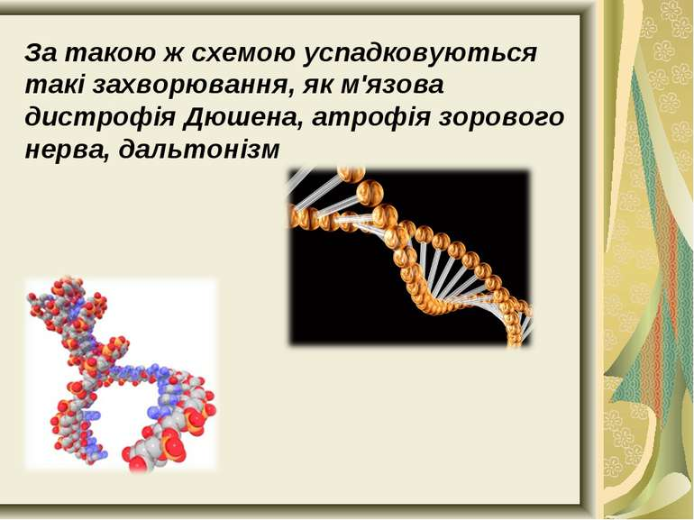За такою ж схемою успадковуються такі захворювання, як м'язова дистрофія Дюше...