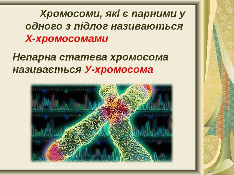 Хромосоми, які є парними у одного з підлог називаються Х-хромосомами Непарна ...
