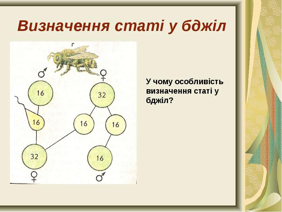 Визначення статі у бджіл У чому особливість визначення статі у бджіл?