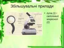 Збільшувальні прилади лупа (1) і світловий мікроскоп (2)