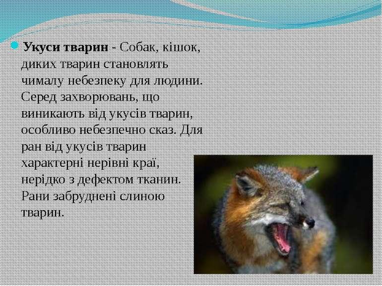 Укуси тварин- Собак, кішок, диких тварин становлять чималу небезпеку для люд...