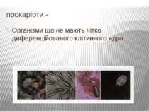 прокаріоти - Організми що не мають чітко диференційованого клітинного ядра.