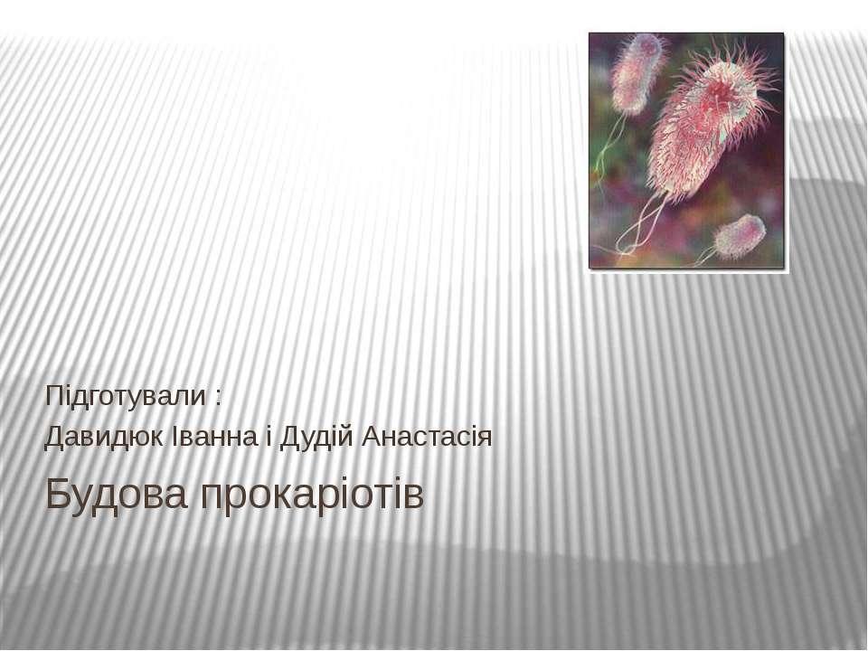 Будова прокаріотів Підготували : Давидюк Іванна і Дудій Анастасія