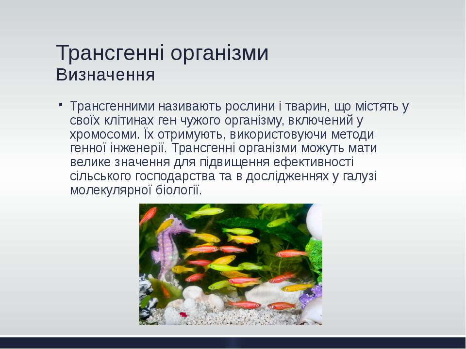 Трансгенні організми Визначення Трансгенними називають рослини і тварин, що м...