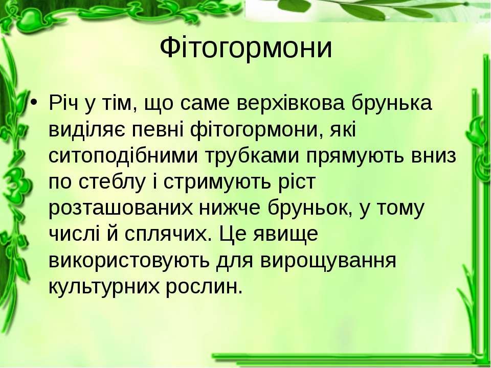 Фітогормони Річ у тім, що саме верхівкова брунька виділяє певні фітогормони, ...