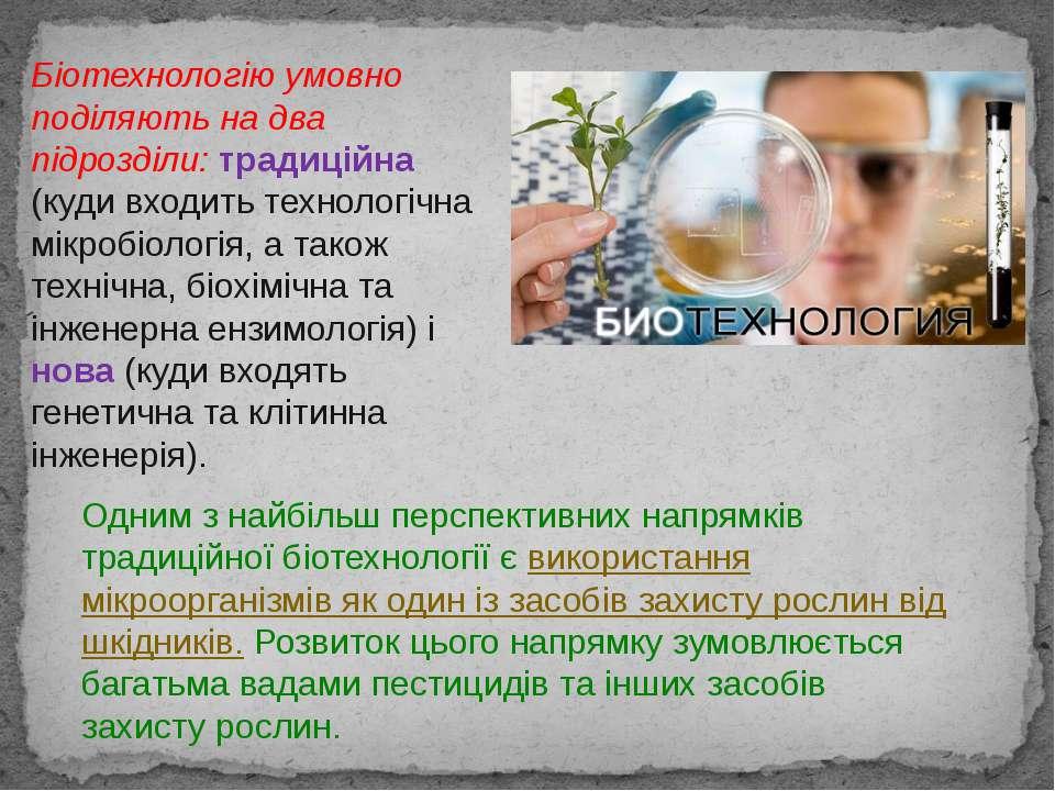 Одним з найбільш перспективних напрямків традиційної біотехнології є використ...