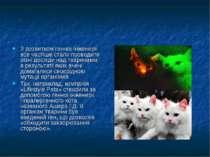 З розвитком генної інженерії все частіше стали проводити різні досліди над тв...