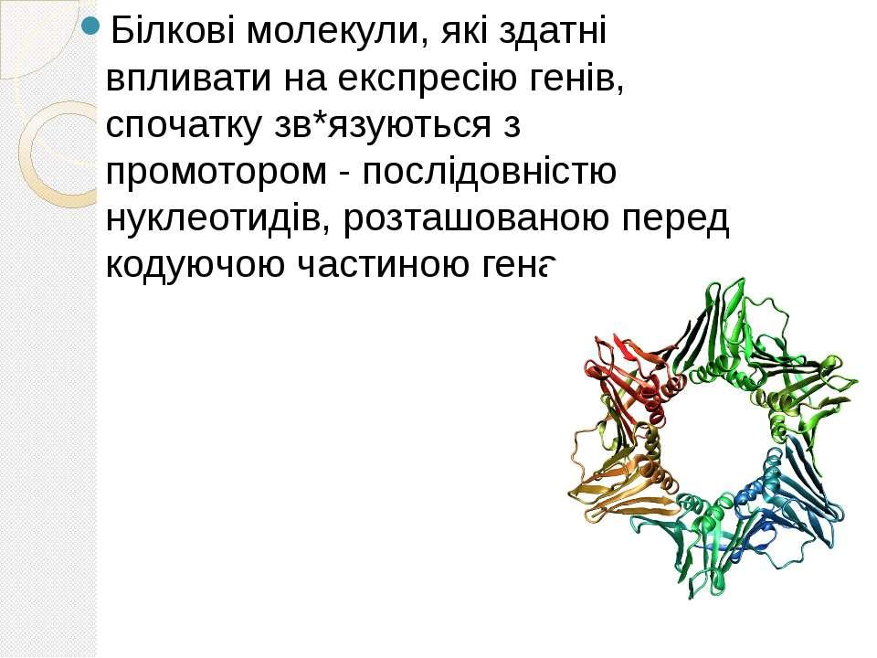 Білкові молекули, які здатні впливати на експресію генів, спочатку зв*язуютьс...