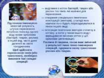— виділення з клітин бактерій, тварин або рослин тих генів, які намічені для ...