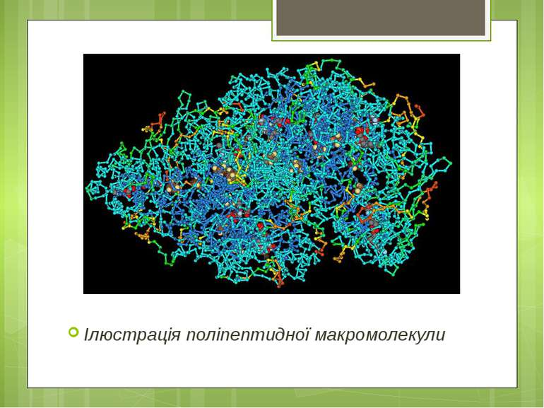 Ілюстрація поліпептидної макромолекули