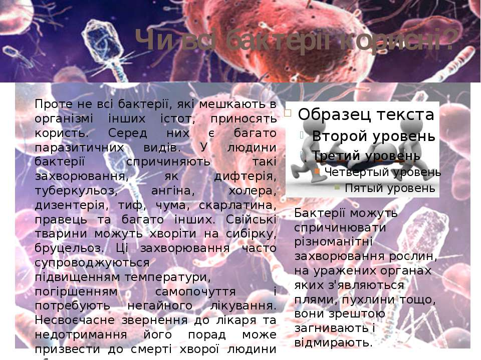 Чи всі бактерії корисні? Проте не всі бактерії, які мешкають в організмі інши...