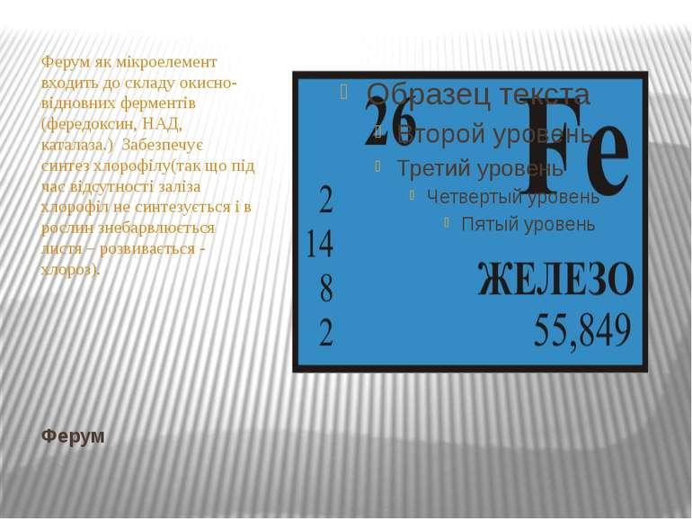 Ферум Ферум як мікроелемент входить до складу окисно-відновних ферментів (фер...