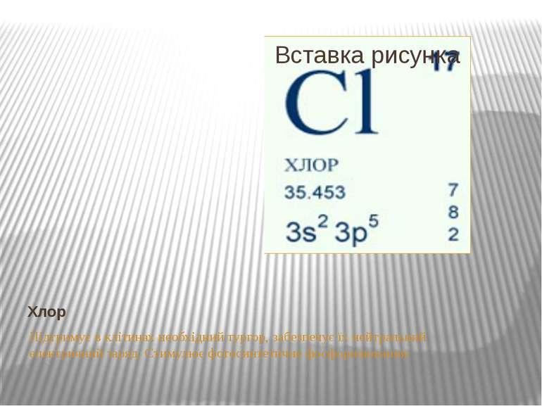 Хлор Підтримує в клітинах необхідний тургор, забезпечує їх нейтральний електр...