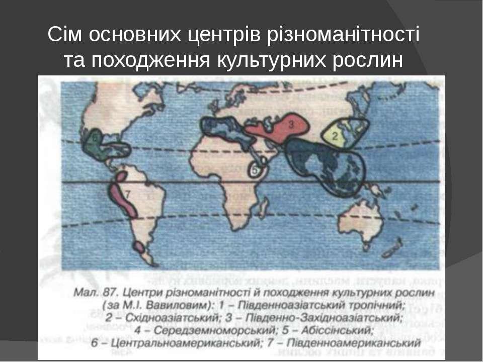 Сім основних центрів різноманітності та походження культурних рослин
