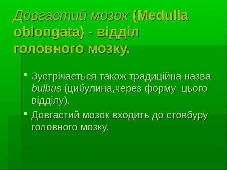 Довгастий мозок (Medulla oblongata)- відділ головного мозку. Зустрічається т...