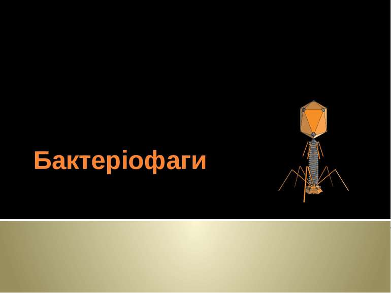 Бактеріофаги