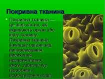 Покривна тканина Покривна тканина — це шар клітин, які вкривають орган або ін...