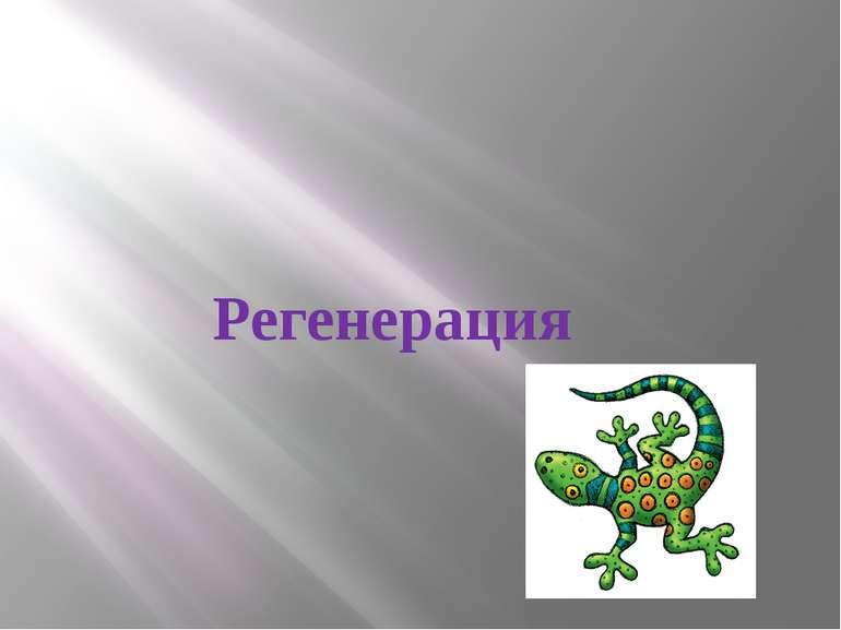 Регенерация