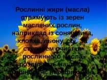 Рослинні жири (масла) отримують із зерен масляних рослин, наприклад із соняшн...