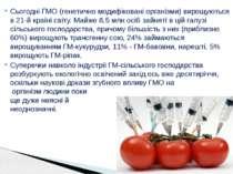 Сьогодні ГМО (генетично модифіковані організми) вирощуються в 21-й країні сві...