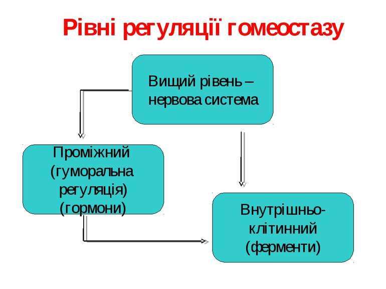 Вищий рівень – нервова система Проміжний (гуморальна регуляція) (гормони) Вну...