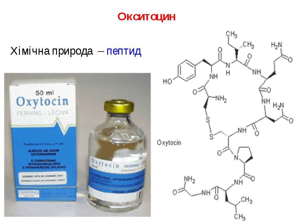 Окситоцин Хімічна природа – пептид