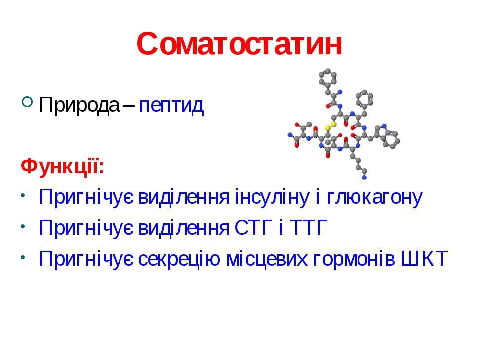 Соматостатин Природа – пептид Функції: Пригнічує виділення інсуліну і глюкаго...