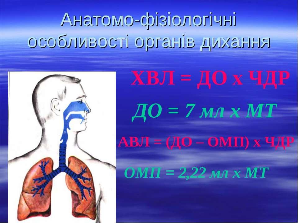 Анатомо-фізіологічні особливості органів дихання ХВЛ = ДО х ЧДР ДО = 7 мл х М...