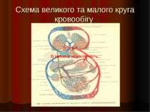 Схема великого та малого круга кровообігу 3) змішану недостатність. 3) змішан...
