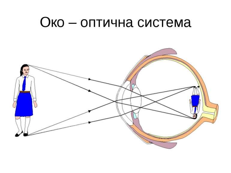 Око – оптична система