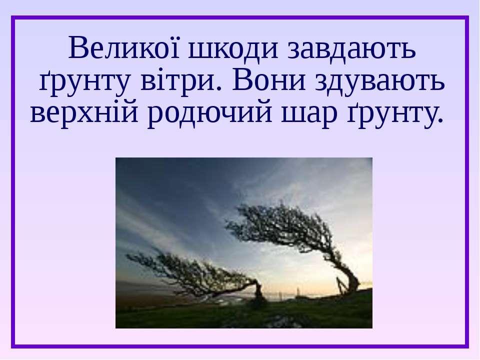 Великої шкоди завдають ґрунту вітри. Вони здувають верхній родючий шар ґрунту.