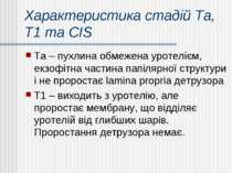 Характеристика стадій Та, Т1 та CIS Та – пухлина обмежена уротелієм, екзофітн...