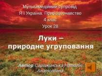 Мультимедійний супровід Я і Україна. Природознавство 4 клас Урок 28 Автор Сар...