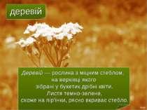 деревій Деревій — рослина з міцним стеблом, на верхівці якого зібрані у букет...
