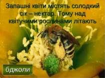 Запашні квіти містять солодкий сік – нектар. Тому над квітучими рослинами літ...
