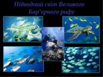 Підводний світ Великого Бар'єрного рифу