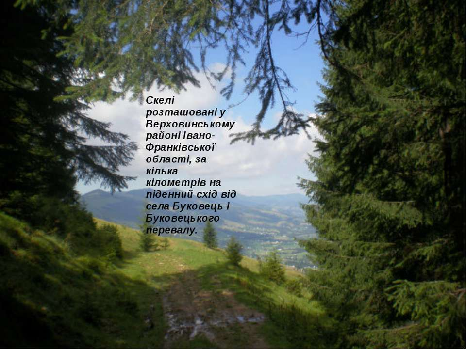 Скелі розташовані у Верховинському районі Івано-Франківської області, за кіль...