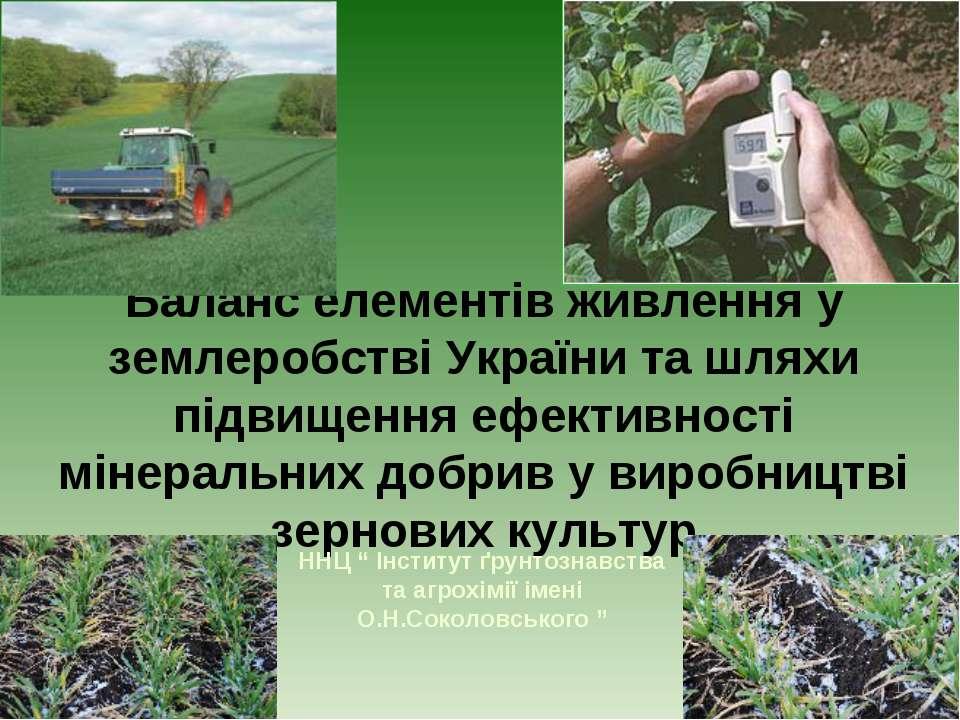 Баланс елементів живлення у землеробстві України та шляхи підвищення ефективн...
