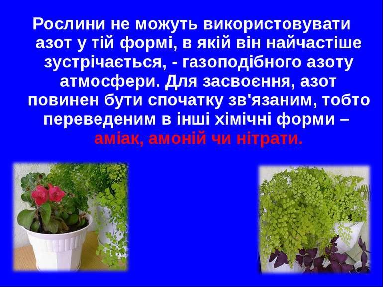 Рослини не можуть використовувати азот у тій формі, в якій він найчастіше зус...