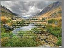 Низинні(евтрофні) болота живляться за рахунок атмосферних опадів і грунтових ...