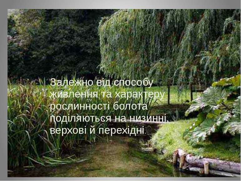 Залежно від способу живлення та характеру рослинності болота поділяються на н...