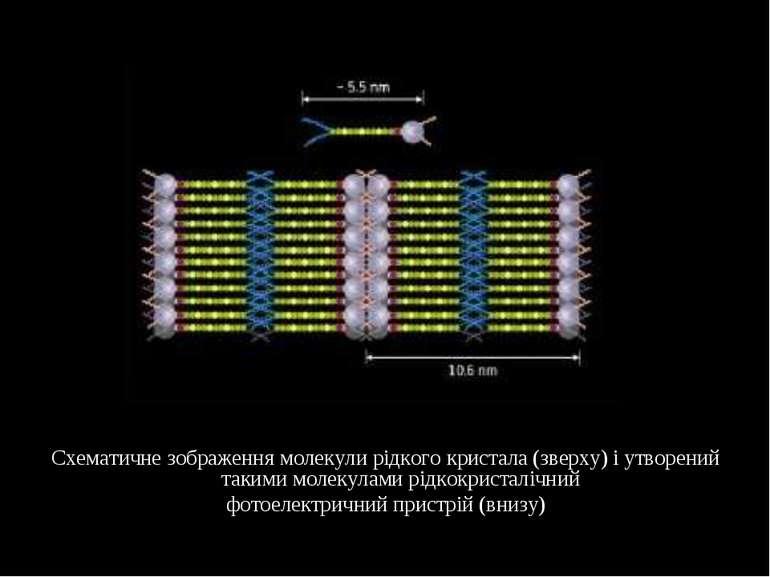 Схематичне зображення молекули рідкого кристала (зверху) і утворений такими м...