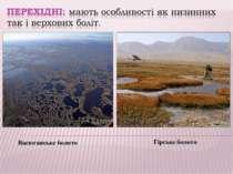 Васюганське болото Гірське болото