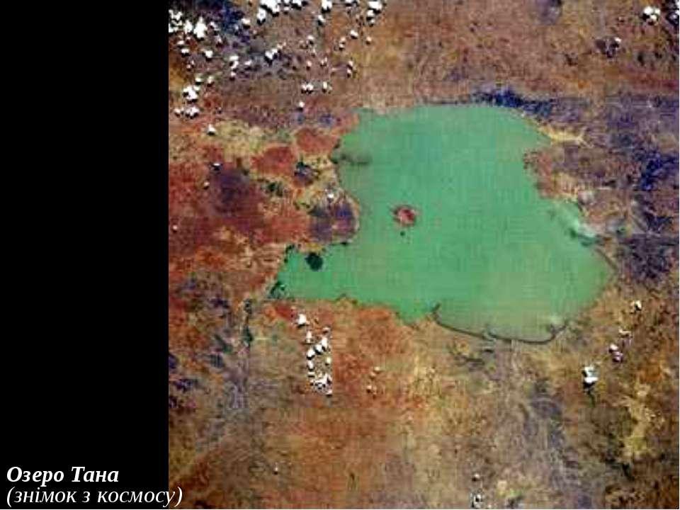 Озеро Тана (знімок з космосу)