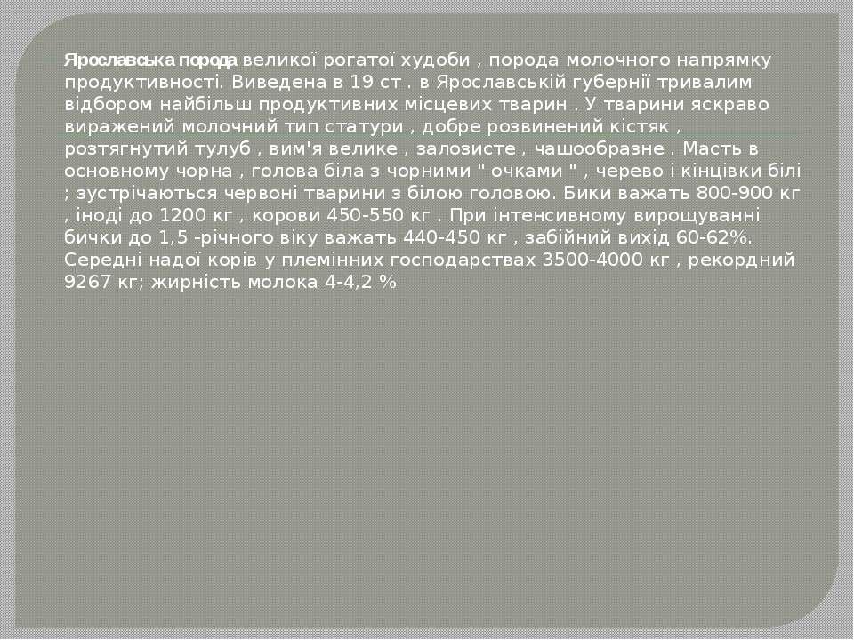 Ярославська порода великої рогатої худоби , порода молочного напрямку продукт...