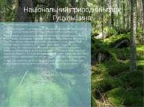 """Національний природний парк Гуцульщина Загальна інформація НПП """"Гуцульщина"""" –..."""